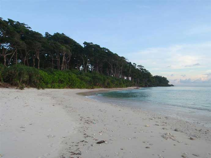 Neil Island - Top Places To Visit in The Andaman Islands [For Any Seasons]