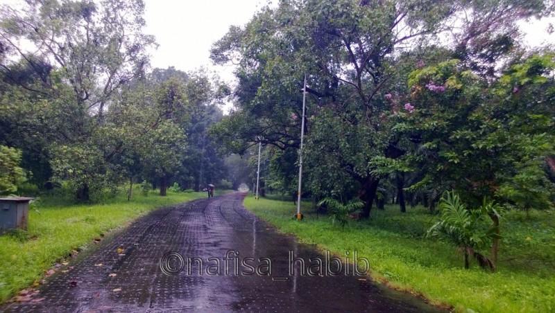 Acharya Jagadish Chandra Bose Botanical Garden