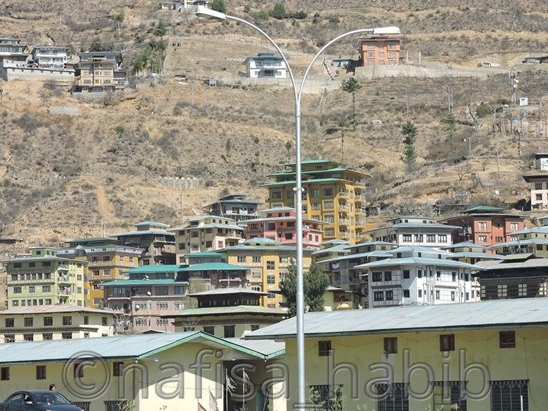 Traditional Architecture in Thimphu