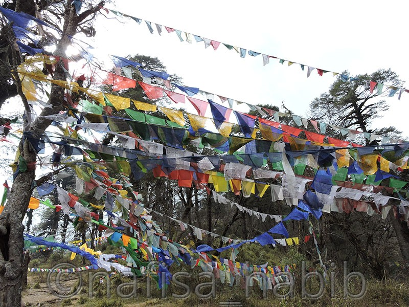 bhutan prayer flags - Top Six Places to Visit in Thimphu, Bhutan