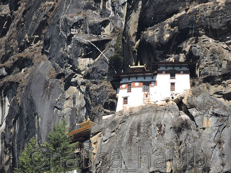 Must Visit Place in Paro - Paro Taktsang