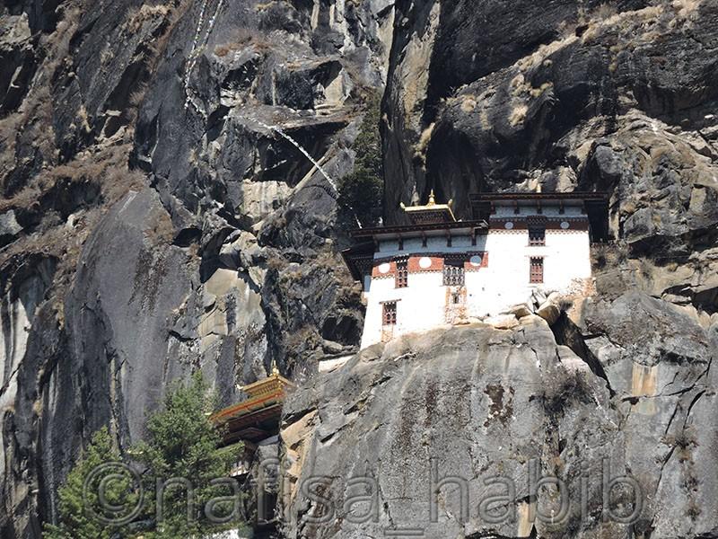 paro taktsang - Five Must Visited Place in Paro, Bhutan