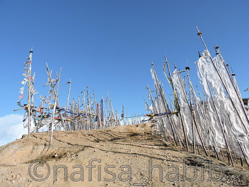 prayer flags at chelela - Five Must Visited Place in Paro, Bhutan