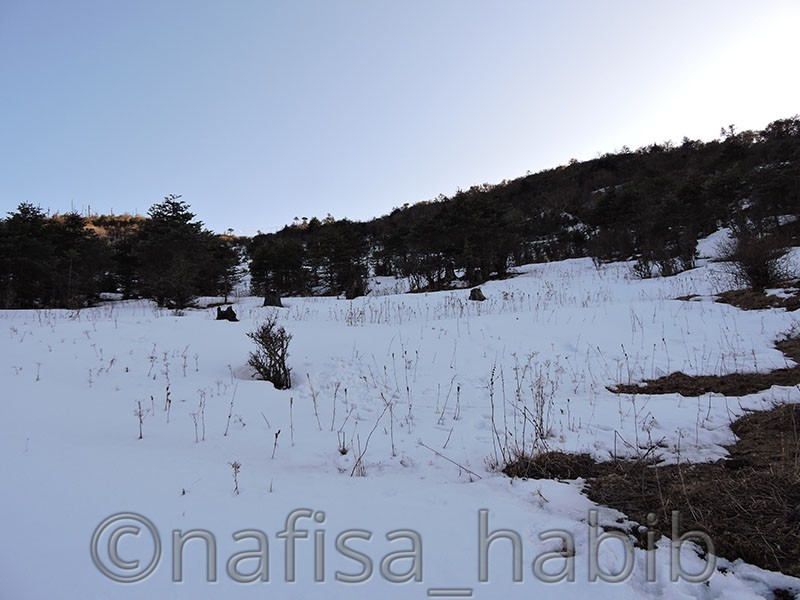 snowfall at chele la pass - Five Must Visited Place in Paro, Bhutan
