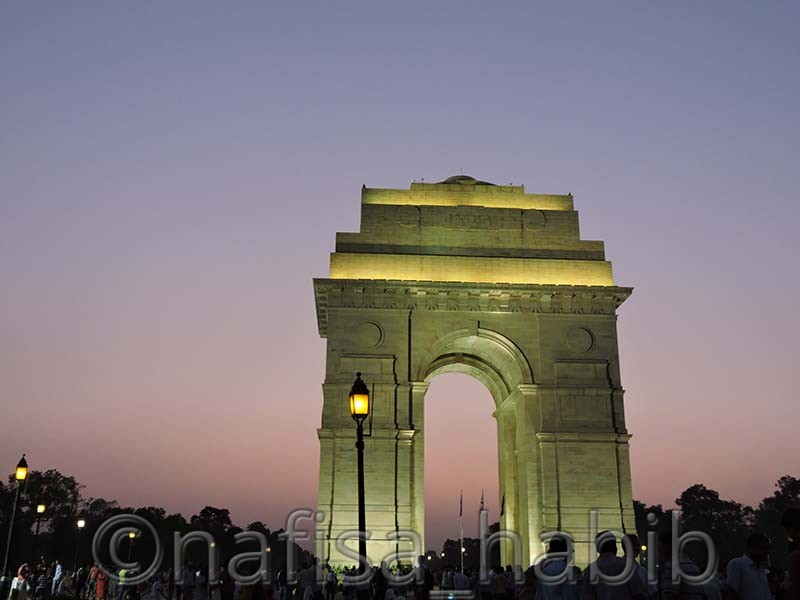 india gate - My 10 Days Historic Solo Trip in India [When Travelling Is More Than Fun]