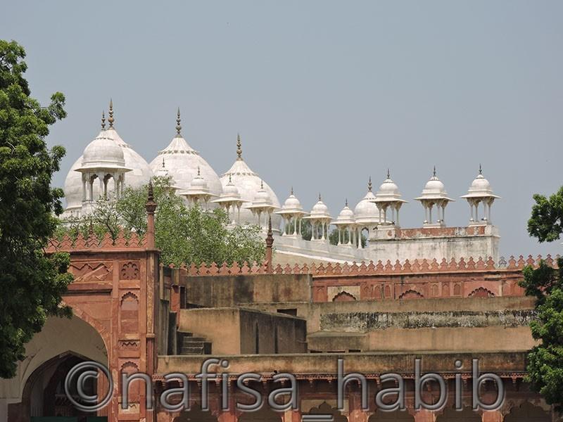 Moti Masjid of Agra Fort