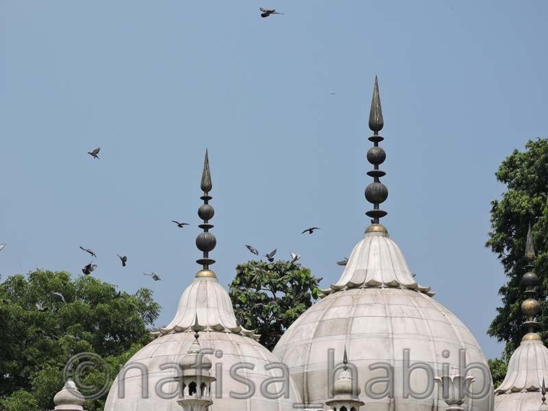 Moti Masjid of Lal Qila