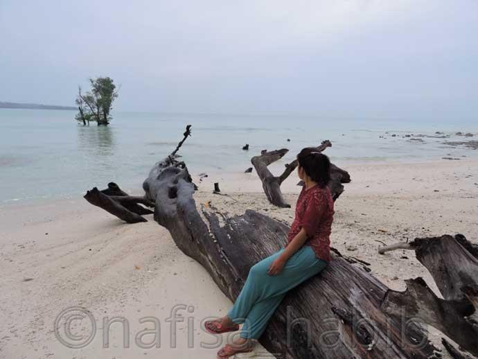 Amazing serenity at Vijaynagar beach - 3 Top Beaches in Havelock Island