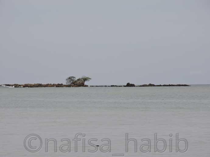 Snake Island at Corbyn's Cove Beach