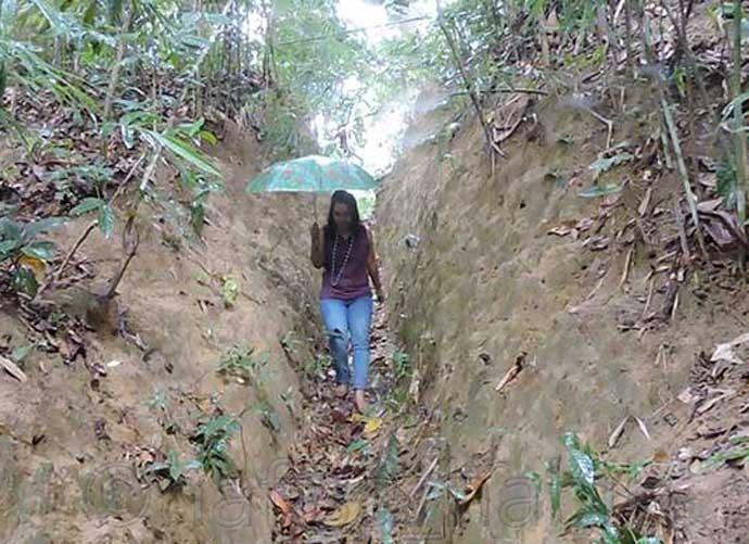 Lawachara Rain Forest