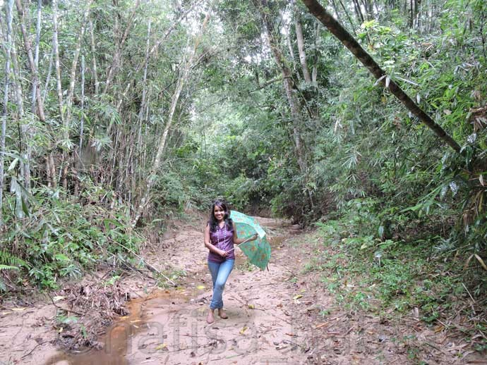 Lawachara Forest - Three Hours Adventure at Lawachara Rain Forest in Sylhet, Bangladesh