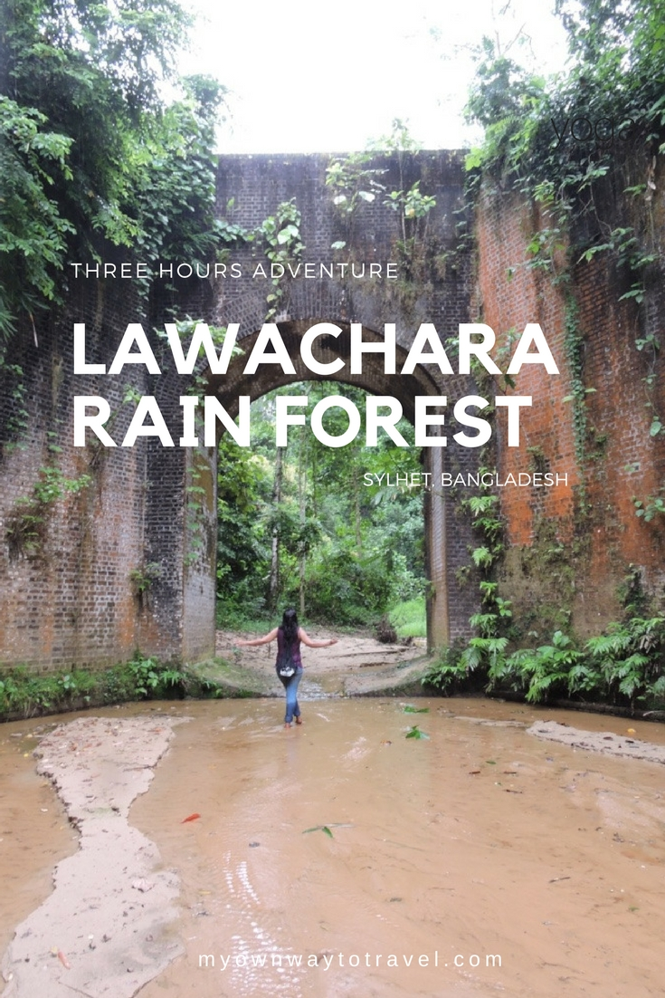Three Hours Adventure at Lawachara Rain Forest in Sylhet, Bangladesh