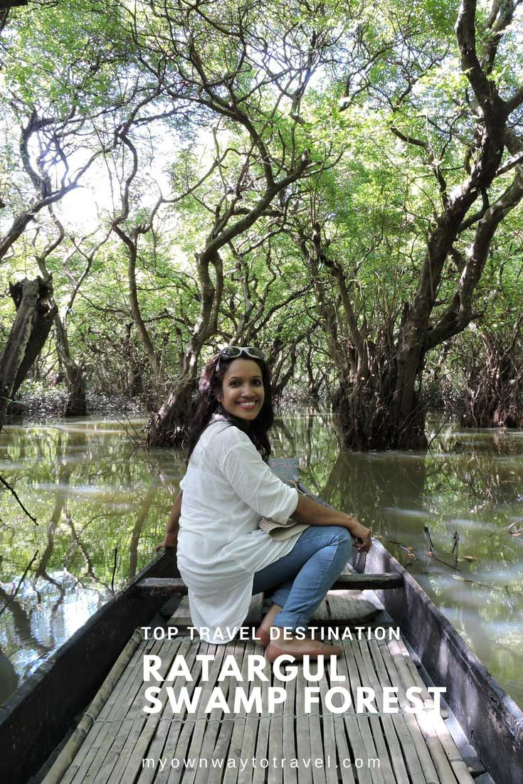 Top Travel Destination Ratargul Swamp Forest in Sylhet, Bangladesh