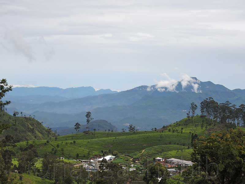 Scenic and Small Hill Town Haputale in Sri Lanka