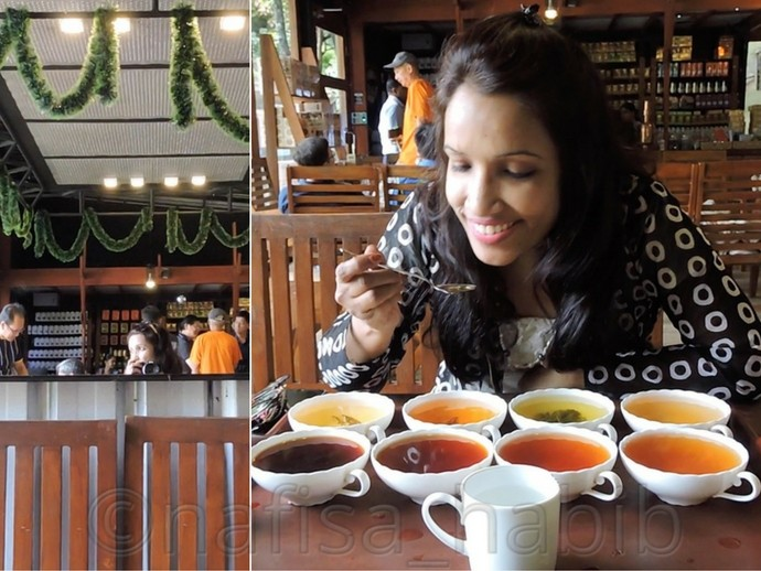 Sri Lankan Tea at Storefield Tea Factory
