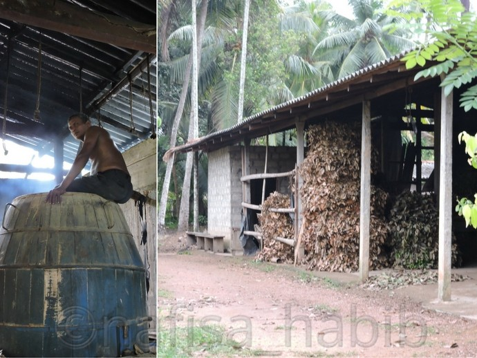 Traditional Oil Processing of Cinnamon