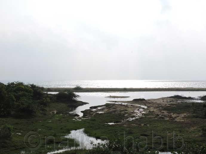 Beautiful Indian Ocean from Yala National Park - Three Hours Jeep Safari Tour at Yala National Park in Sri Lanka