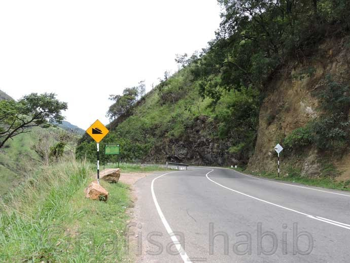 Beautiful Road in Ella - 6 Top Travel Destinations In Sri Lanka To Explore