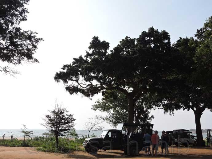 Jeep Safari at Yala - Three Hours Jeep Safari Tour at Yala National Park in Sri Lanka