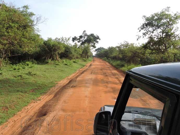 Yala National Park in Sri Lanka - Three Hours Jeep Safari Tour at Yala National Park in Sri Lanka