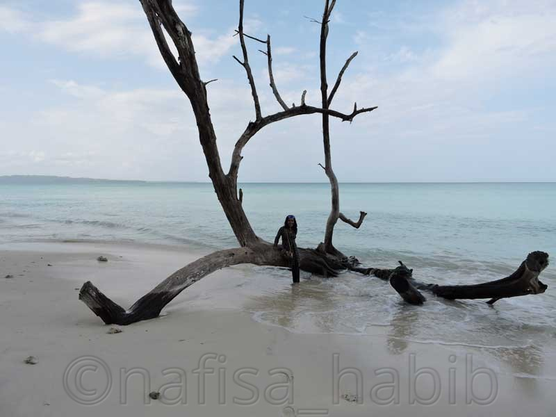 Kalapathar Beach in Havelock Island, India