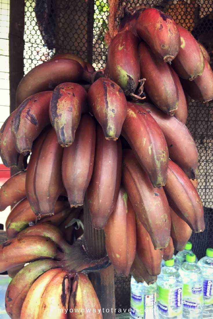Red Banana from Sri Lanka is locally as Rath Kesel. The health benefits are more than the regular banana