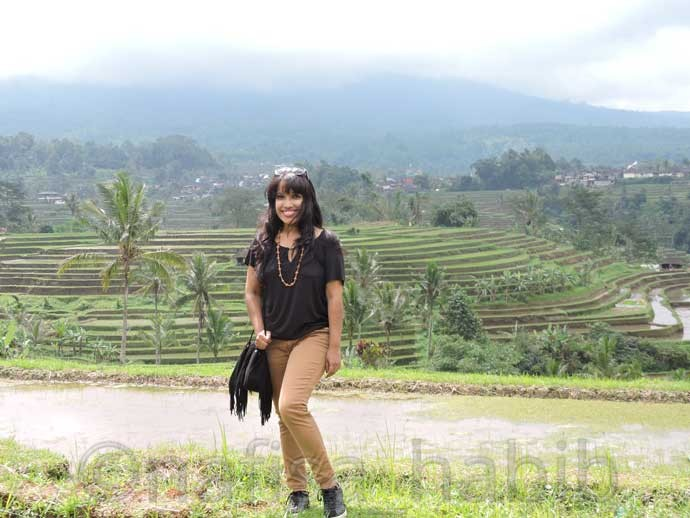 Jatiluwih Rice Terrace in Bali - 10 Best Places To Visit In Bali