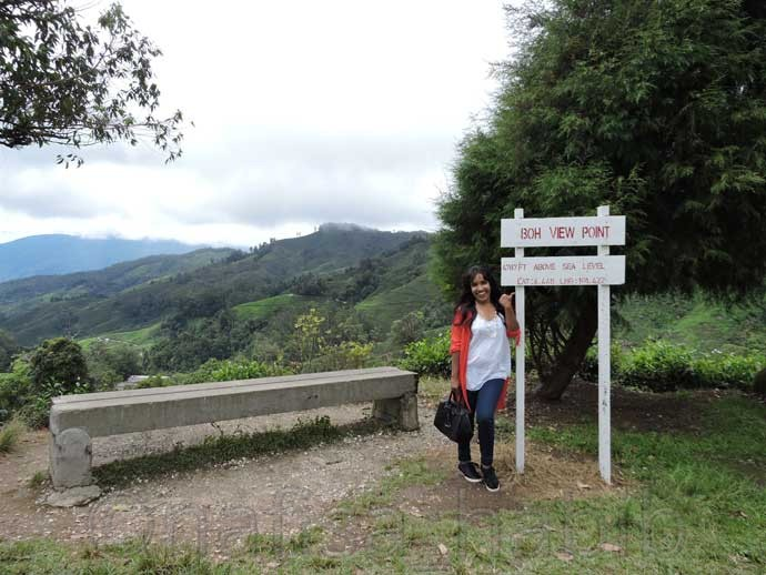 BOH View Point Cameron Highlands