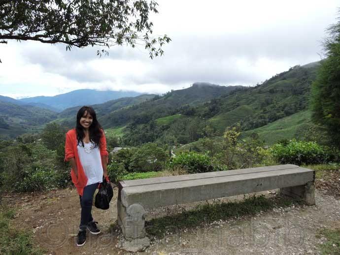 Trip To Cameron Highlands Pahang Malaysia