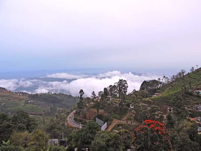 Scenic Beauty of Haputale From Olympus Plaza Hotel