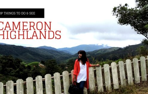 A Visit To Cameron Highlands in Malaysia