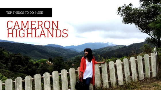 One Day Trip To Cameron Highlands In Malaysia