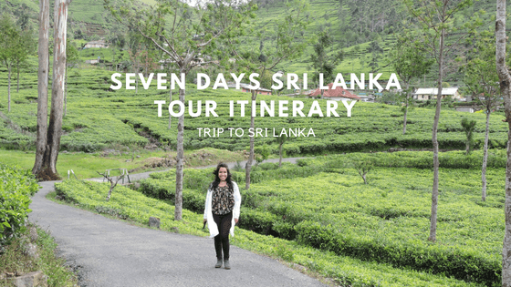 My Solo Trip To Sri Lanka (Seven Days Itinerary)