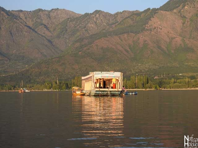 Bulbul Sports Cruise on Dal Lake