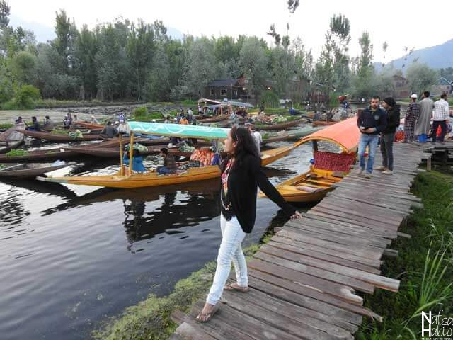 Floating Vegetable Markets on Dal Lake