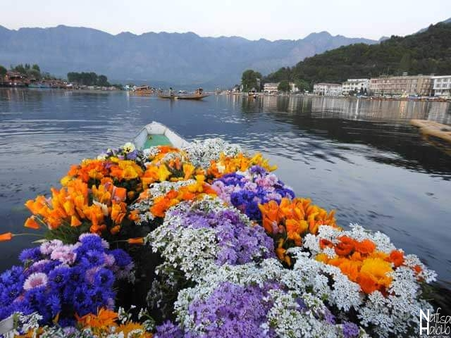 Flower Shikara on Dal Lake in Srinagar