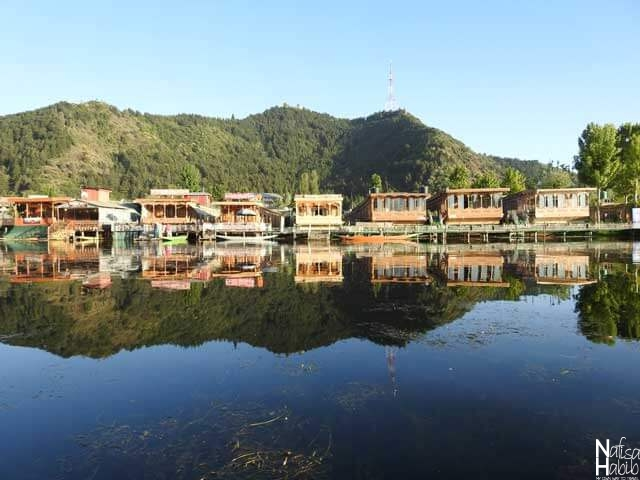 Dal Lake Houseboat pictures - Houseboats in Kashmir Dal Lake