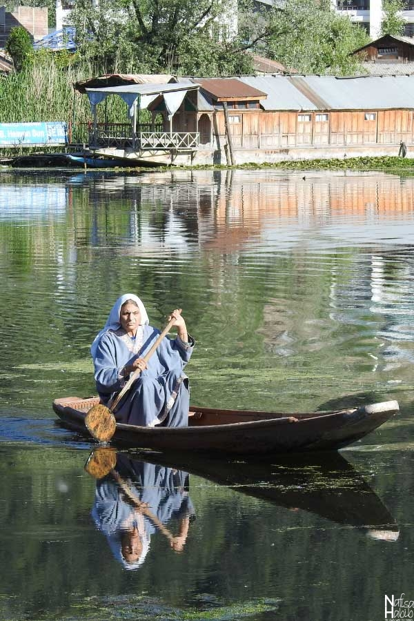 Kashmiri woman rowing a small boat on Dal Lake