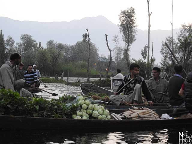 Organic vegetables ready to sell at Floating Market Dal Lake Srinagar