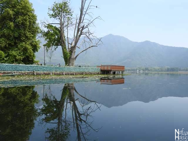 The breathtaking water reflection of Char Chinar Island