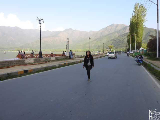 The famous Boulevard road of Srinagar