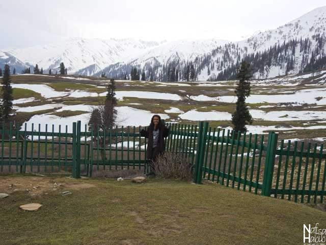 The beautiful Kongdoori Valley of Gulmarg with the snowy mountain view of Pir Panjal range