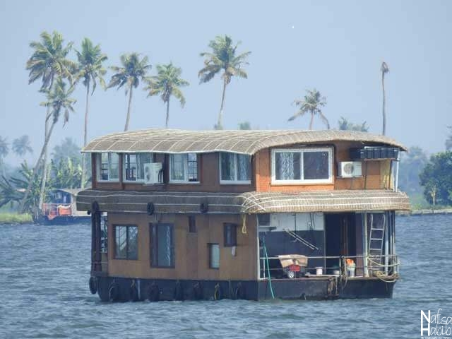 Best Time to Visit Kerala Backwaters - Houseboat Cruise