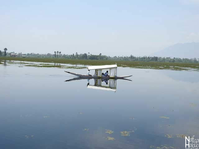 Cruising Around on the Dal Lake by shikara