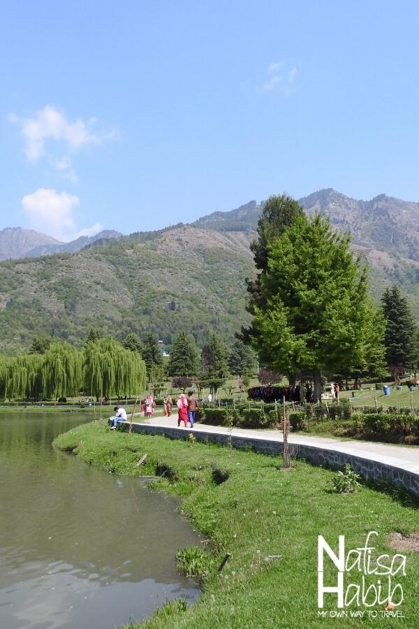 Places to visitnear Srinagar - Beautiful Srinagar Botanical Garden