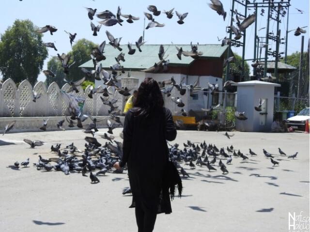 SrinagarIndia points of interest - Hazratbal Shrine in Srinagar