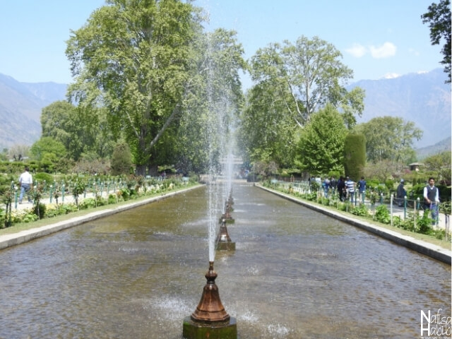 Top places to see in Srinagar - Mughal Garden Shalimar Bagh