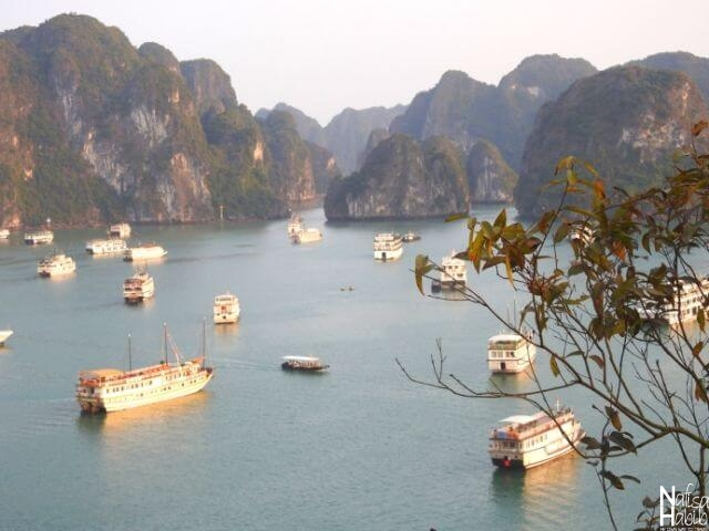 UNESCO World Heritage Site Ha Long Bay - Spectacular viewpoint of Halong Bay from the top of Titop Island