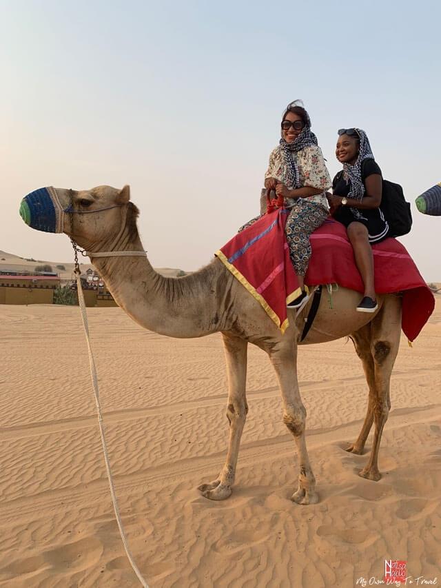 Dubai Desert Safari - Camel ride at Dubai safari camp