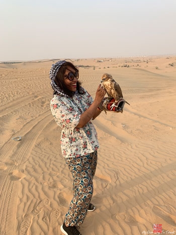 Dubai's national bird Falcon in safari tour